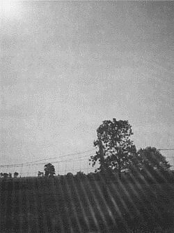 The Three-Cornered Field by moonlight, 1961